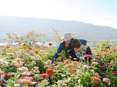 The last breath of Summer. This is a picture of the owners in the Flower Farm on the venue property. Create your own bouquet (we can help) or just have your pictures taken here. This romantic option is included in all of our new packages! Elopement Inspiration, Rustic Farmhouse Decor, Flower Farm, Romantic Weddings, British Columbia, Wedding Ceremony, Bouquet, Couple Photos, Garden