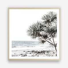 Shop Coastal & Tropical wall art prints by The Print Emporium. View our range of beach themed canvas prints, and framed or unframed art prints, available in a wide range of colours and patterns. Designed and made in Australia Beach Artwork, Canvas Artwork, Artwork Prints, Framed Art Prints, Canvas Prints, Square Art, Square Canvas, Mdf Frame, Canvas Frame