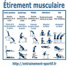 etirements musculaires pour les ischio-jambiers, les quadriceps, les mollets les adducteurs et le dos