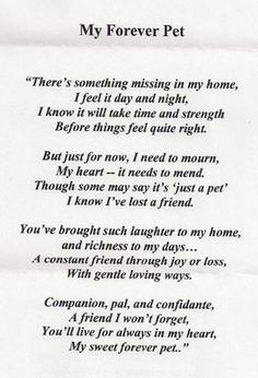 Pet Loss Quotes - Ever Memorial Grief Support When Pets . Dogs Tumblr, I Love Dogs, Puppy Love, Pet Poems, Cat Loss Poems, Dog Loss Poem, Jiff Pom, Pet Loss Grief, Loss Of Pet
