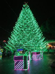 Alumbrados Navideños: we provide a guide to the world-class 2019 Medellín Christmas lights that will have primary lights at 2 locations in Medellín in Large Christmas Tree, Christmas Lights, Farm Fun, The Row, Fair Grounds, Neon Signs, Seasons, Columbia, Wallpaper