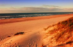 Ocracoke Lifeguarded Beach on the Outer Banks of North Carolina is No. 4 on Dr. Beach's Top 10 U.S. Beaches.