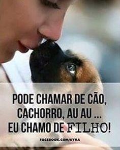 É MEU FILHO LINDO!!!❤❤❤ #cachorroterapia #caopanheiro #cachorroetudodebom #cachorros #cachorro #petmeupet #petshop #filhode4patas #maedecachorro #paidecachorro #labrador #golden #shihtzu #schnauzer #lhasaapso #pug #maltes #yorkshire #bulldogfrances #viralata #amoanimais #amocachorro