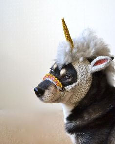 Behold! The mythical unipup. Crocheted unicorn mask for dogs by Hiroko: http://j.mp/1iBY6i0 pic.twitter.com/O8C6zsWpcX