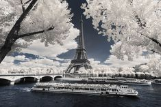 Invisible Paris: Pierre Louis Ferrer infrared photography turns the City of Lights into a winter wonderland   #architecture #art #cathedral #city #cityoflights #cityscape #couple #eiffeltower #france #infrared #landscape #landscapephoto #love #notredame #paris #photo #photography #pierrelouisferrer #seine #travel #travelphoto