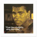 I am the greatest Muhammad Ali...