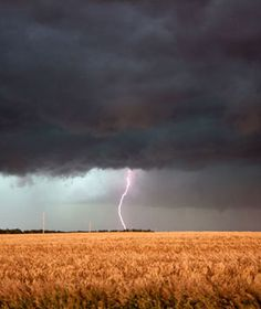 If you are stuck outdoors with absolutely no shelter in sight during a lightning storm, squat down to be at the lowest point and balance on the balls of your feet.