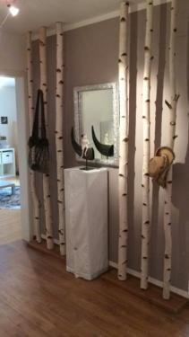 super Bildergebnis for birch trunk wardrobe - - Garderobe Modern Wardrobe Room, Wardrobe Furniture, Diy Wardrobe, Wardrobe Images, Super Pictures, E Claire, Living Room Decor, Bedroom Decor, Decoration Entree