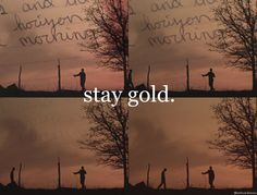 """stay gold. . . """"Like the way you dig sunsets, Pony. That's gold. Keep that way, it's a good way to be.""""-Johnny Cade"""