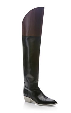 Lovanni Over The Knee Boot by Alexander Wang.