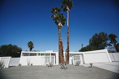 Palm Springs Mid-Century Modern Xeriscaping Mid Century Modern Landscaping, Palm Springs Mid Century Modern, San Diego Vacation, House Proud, Decor Crafts, Home Decor, Cheap Web Hosting, Mid-century Modern, Xeriscaping