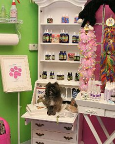 Pinned from marthastewart.com .Pet Spa