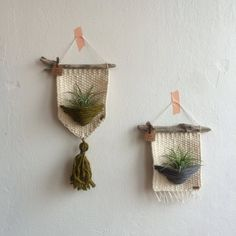 Diy Crafts - Air plants woven wall hanging woven wall hanging home decor Woven Wall Hanging, Diy Hanging, Hanging Plants, Best Office Plants, Ideas Paso A Paso, Diy Adornos, Macrame Plant Hangers, Weaving Projects, Macrame Projects