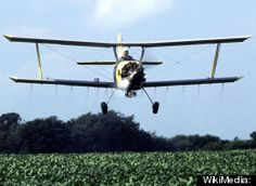 Pesticide Use Proliferating With GMO Crops, Study Warns  Posted: 10/04/2012