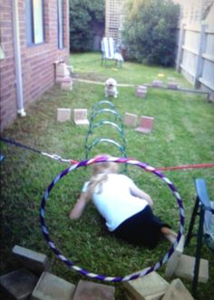 Simple homemade dog agility course. Made of hula hoops, scrap pieces of wood, bricks... Etc.