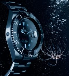 Creatures of the deep: Gonionemus vertens and the Sea-Dweller.