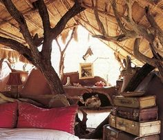inside of a treehouse.