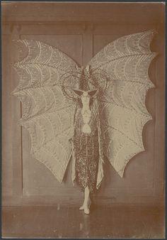 Portrait of Pixie Herbert in a bat costume, ca. 1923 | par National Library of Australia Commons