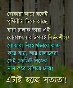 Muslim Quotes, Islamic Quotes, Morning Images, Good Morning Quotes, Funny Images, Funny Photos, Bengali Love Poem, Bangla Funny Photo, Woman Quotes