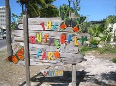 #aioutlet  I need to MIGRATE south to ARuba, so please pick me:)
