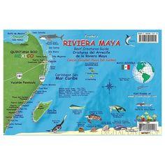Scuba diving & snorkeling Riviera Maya Cancun