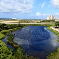 99 Things to Do with Kids in Gulf Shores,AL | TripBuzz