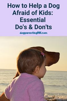 Whether or not you have children in the home, your dog will encounter them at some point. If he's afraid of them here's what you can do to help.  #fearfuldog #helpfultips #socialiseyourdog Dog Health Tips, Dog Health Care, Pet Sitters International, Group Of Dogs, Cute Dog Photos, Dog Anxiety, Dog Games, Animal Antics, Separation Anxiety