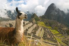 10 Latin America Ecotourism Adventures for Your World Travel Bucket List | Manchu Picchu Peru  www.greenglobaltravel.com