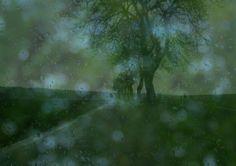 Nature morte avec la pluie (© susanhol.nl)