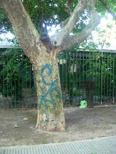 Pobre árbol