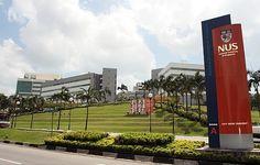 Học bổng từ trường đại học quốc gia Singapore ( NUS ) National University of Singapore ( NUS ) là Đại học Công lập lâu đời nhất và lớn nhất trong ba viện Đại học Công lập của Singapore.  Trường được thành lập từ năm 1905 và tọa lạc tại tây nam Singapore tại Kent Ridge với diện tích rộng 150 hecta với hơn 40 tòa nhà bao gồm 16 khoa đào tạo với các chuyên ngành đa dạng.