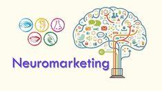 Neuromarketing: Conoce Cómo Actuarán tus Clientes #DKSignMT #DKSign #DKS #infografias #Infographics