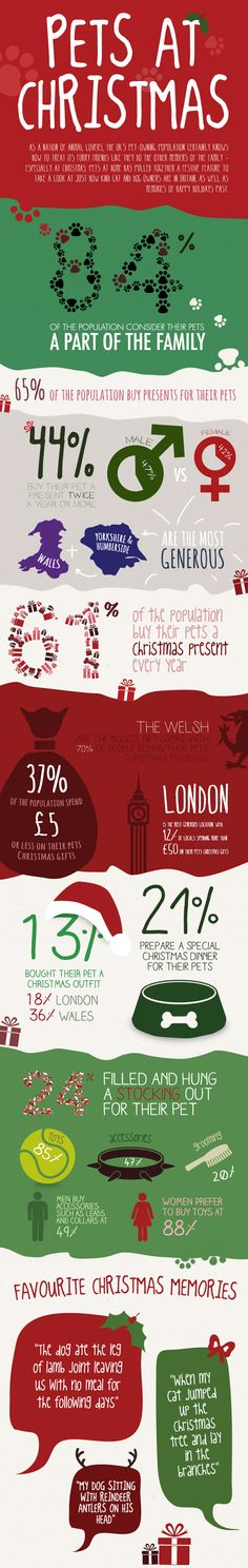 Pets at Christmas   | Visit our new infographic gallery at http://visualoop.com/