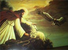 Jesus and the lost sheep - shepherd, sheep, love, god, jesus