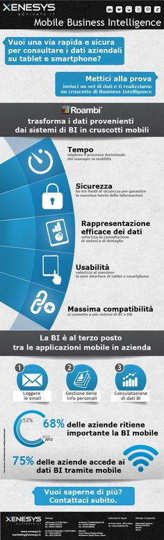 Roambi: Business Intelligence Mobile per trasformare i dati in strategie.