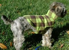 Dapper Dog Coat Pattern   AllFreeSewing.com