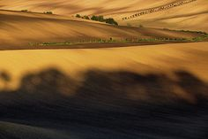 Autumn light and shadow in countryside by Pavel Rezac Autumn Lights, Light And Shadow, Tuscany, Countryside, Fields, Design Inspiration, Sunset, Wall Art, Outdoor