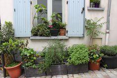Pots terrasse