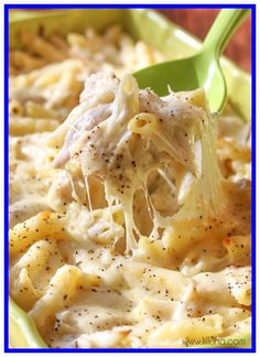 chicken pasta casserole recipes food network-#chicken #pasta #casserole #recipes #food #network Please Click Link To Find More Reference,,, ENJOY!! Alfredo Pasta Bake, Chicken Alfredo Casserole, Alfredo Recipe, Casserole Dishes, Casserole Recipes, Pasta Casserole, Cheesy Chicken Recipes, Chicken Sausage, Recipe Chicken