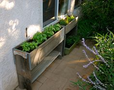 New herb window boxes outside of the kitchen. Actually, my hubby made them, not me.