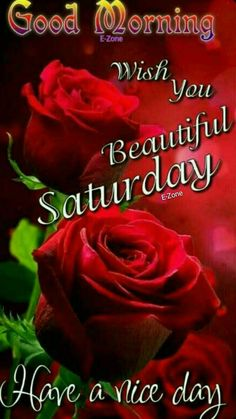 Good Morning Saturday, Good Morning Gif, Happy Saturday, Morning Qoutes, Good Day, Blessed, Flowers, Image, Beautiful