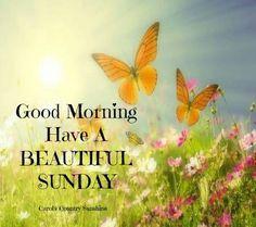 Good Morning have a beautiful Sunday !!!