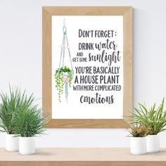 House Plant Funny Quote Water Reminder Quote Print Plant Illustration Wall Art Self Care Hanging Plant Gift for Her Housewarming Dorm Decor - All For Garden