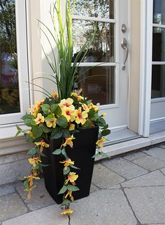 One way to beautify the entrance of your home is to place some flower pots close to the door. Here are several front door flower pots to inspire . Container Flowers, Flower Planters, Container Plants, Container Gardening, Flower Pots, Diy Flower, Outdoor Flowers, Outdoor Planters, Garden Planters