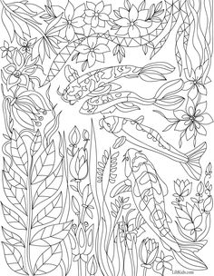 Awesome Koi Lotus Adult Coloring Pages To Print Collection