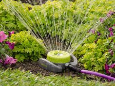 HGTV shares easy ways to save water in the garden and landscaping, including rain-saving cisterns, mulch, rain gardens and adjustable…