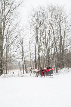 Stowe Vermont is one of the most charming towns we've ever visited and we're sharing all the places to visit, eat and shop! Charming travel guide to Stowe! Vermont Winter, Stowe Vermont, Green Mountain Inn, Winter Road, Best Beer, Winter Wonderland, Places To Visit, Tours, America