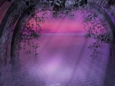 Beautiful purple gate