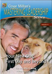 Download Mastering Leadership Series Vol 3 - Your New Dog - First Day and Beyond ebook, pdf