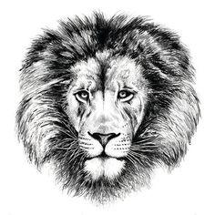 LEW  LION  PRINT by PODOLSKASTUDIOS on Etsy